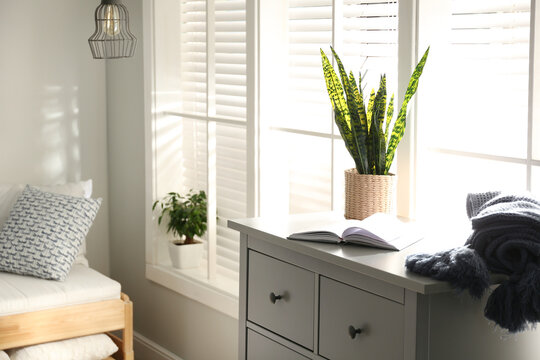 Grey chest of drawers with houseplant, book and blanket near window in bedroom