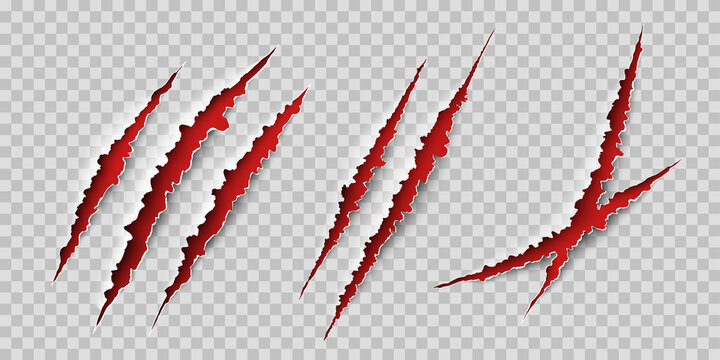 Claws scratches. Wild animal claws scratch texture with red background. Horror, thriller , halloween monster vector scratched marked isolated