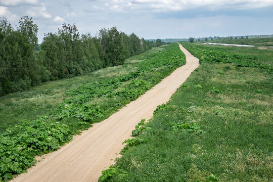 road in the countryside. Where do you want to go today?