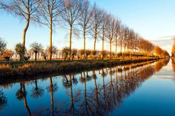 Printed kitchen splashbacks Bridges Reflection of trees boarding a canal at sunset in Damme near Bruges, West Flanders, Belgium.