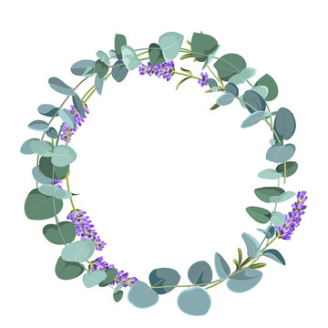 Eucaliptus and lavender elements design template. Simple design with frame flowers. Herbal vector frame