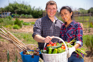 Happy couple of farmers posing with basket of ripe vegetables