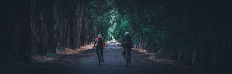 Two women riding bicycle among longer green trees