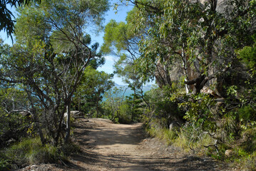 Hiking trail near the summit of The Forts Walk with the mainland on the distant horizon, Magnetic Island, Queensland, Australia