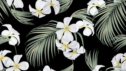 Floral seamless pattern, white plumeria flowers with indoor bamboo palm leaves on black