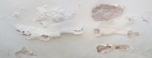 feuchte Kellerwand mit Salzausblühungen und Putzabplatzung