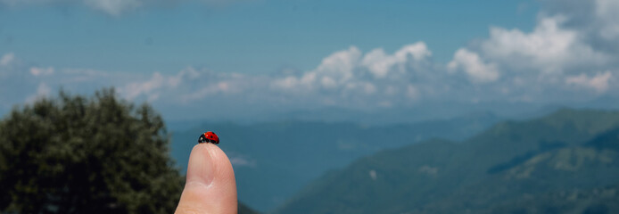 close up of a ladybug on the thumb in the mountains - hope and peace concept.