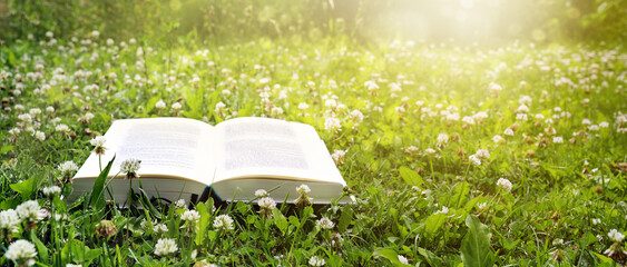 Open book lies on a lawn with clover in the evening sun, holidays and relaxation in the garden...