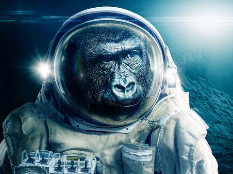 Monkey in astronaut suit explores an alien planet - illustration