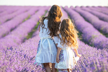 A child in lavender. Beautiful girl in a field with lavender.
