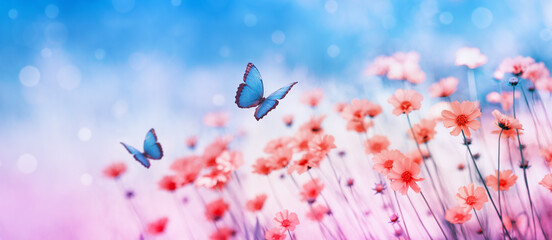 Beautiful flower field and flying butterflies on blue sky background. Colorful toning of amazing nature landscape with wild plants and insects.