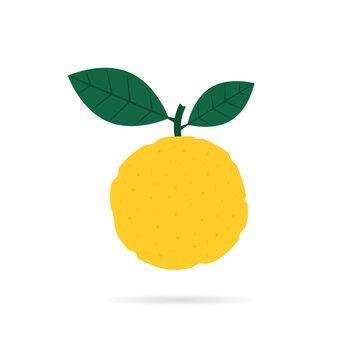 yellow yuzu fruit icon with shadow