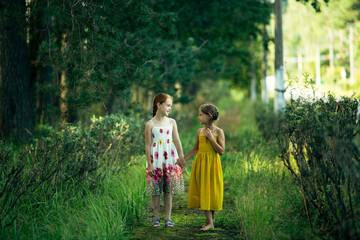 Two little girl friends are walking in a pine Park.