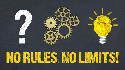 No Rules. No Limits!