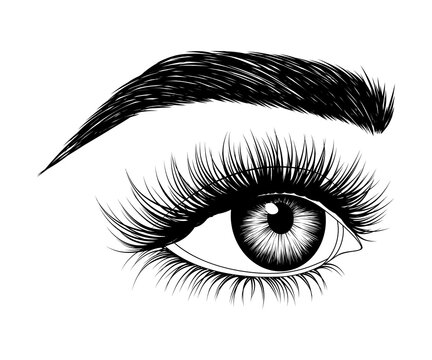 Hand-drawn woman's eye with eyebrow and long eyelashes. Side look. Fashion illustration. Vector EPS 10.