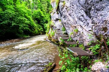 Fototapeta Prielom Hornadu, Hornad gorge, Slovensky Raj - Slovak Paradise, Slovakia, Western Carpathians