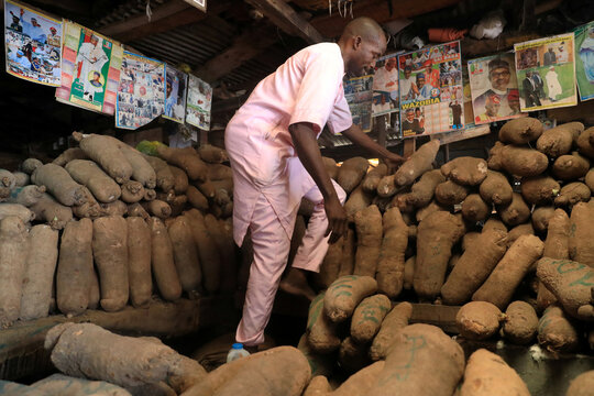 Yam seller arranges tubers of yam at his stall in the market in Lagos