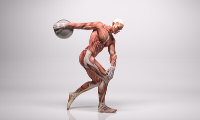 3D Render : The portrait of male character with muscle tissues display