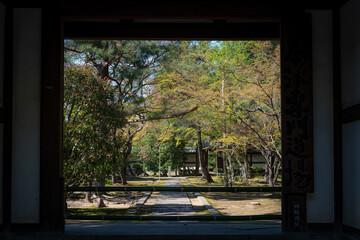 京都 大徳寺 龍翔寺(僧堂)の門前