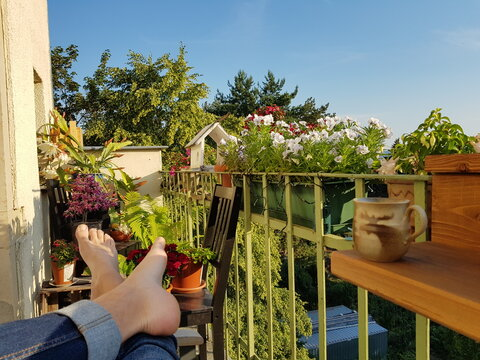 Relaxing on a blooming balcony in summer