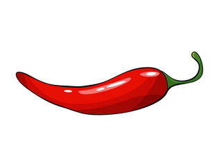 Hand drawn chili pepper. Super hot red chilli pepper. Red chilli pepper on white background. Natural healthy food. Spicy ingredient