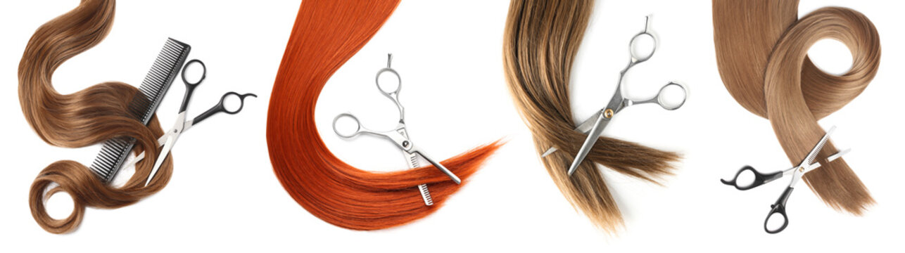 Set with different locks and scissors on white background, top view. Hairdresser service