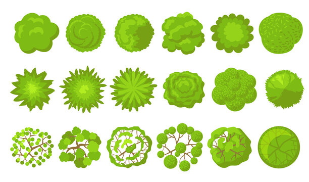 Green trees set. Aerial, plan or top view of park plants, bush, forest or garden. Vector illustrations for garden, landscape, map concept