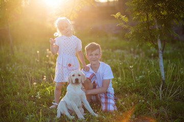 kids play with a dog at sunset