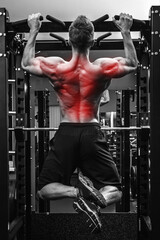 Back specialization in bodybuilidng. Man doing pull-ups on  a horizontal bar
