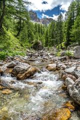 Foto op Canvas Bos rivier Paysage alpin dans le parc du Mercantour - Alpine landscape in the Mercantour park in the South of France