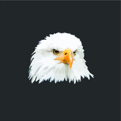 Gift Idea Eagle Photo Bald Eagle vector design illustrator eps new