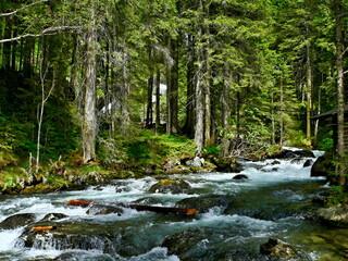 Austrian Alps-view on the stream Untertalbach