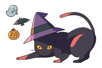 黒猫と三角帽子
