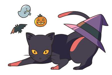 黒猫と後ろに三角帽子