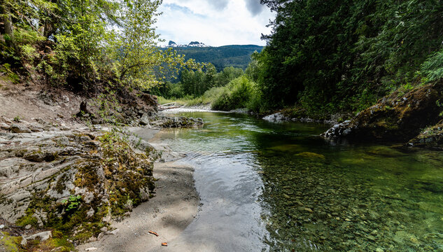 Stream in the forest with peak view