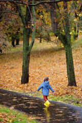 Preschooler boy walking in autumn park. Outdoor activities for children.