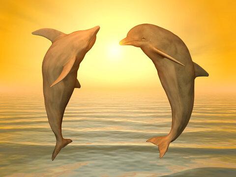 Zwei springende Delfine bei Sonnenuntergang