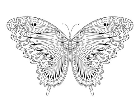 Coloring Page - Butterfly - Line Art