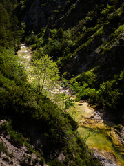 River in the Oetschergraeben Gorge in Austria