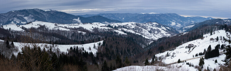 Synevirsky reserve Ukraine. forest on top of mountains winter