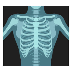 Thorax x-ray. Lungs radiological control. Radiography of chest, ribs., torso. Fluorography.