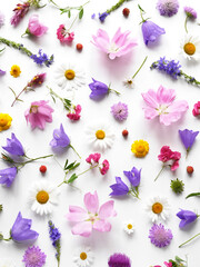 Fototapete - Flowers  flat lay. Pattern from plants, wild flowers isolated on white background, top view. The concept of summer, spring, Mother's Day, March 8.