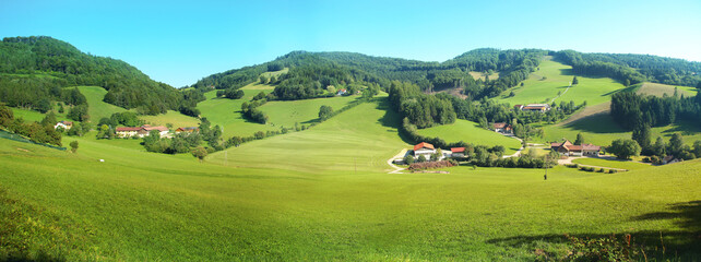 Beautiful panoramic view of rural alpine landscape with cows grazing in fresh green meadows neath snowcapped mountain tops on a sunny day in spring Fototapete