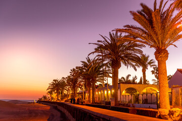 Palm trees on the beach captured during the sunset Dark background of flashing street lights and...
