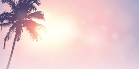 palm trees silhouette on a sunny day summer holiday design vector illustration EPS10 Fototapete