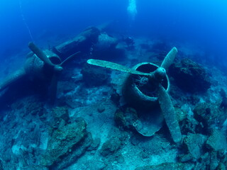 Printed roller blinds Shipwreck exploring airplane wreck underwater taking photos of c47 dakota airplane engine scuba divers to see
