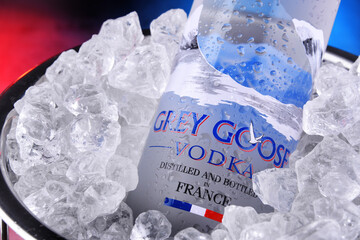 Bottle of Grey Goose Vodka in bucket with crushed ice