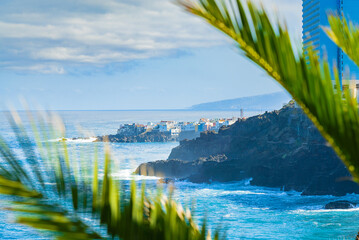 View on ocean shore and colorful buildings on the rock in Punta Brava through the palm leaves, Puerto de la Cruz, Tenerife, Canary Islands, Spain