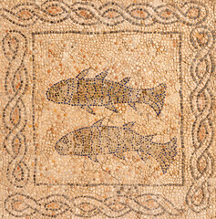 RAVENNA, ITALY - JANUARY 29, 2020: The two fisches as detail of the early christian mosaic pavement from elder builidng in the church Chiesa di San Giovanni Evangelista.