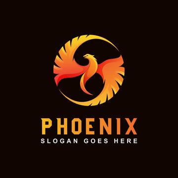 awesome Phoenix logo, eagle, dragon logo animal logo design